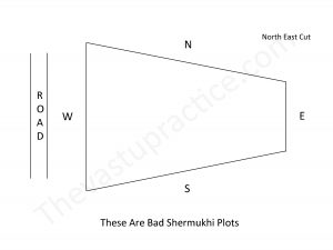 The Vastu Practice Vastu for Plot Shermukhi Plots or Vyaghra Plots