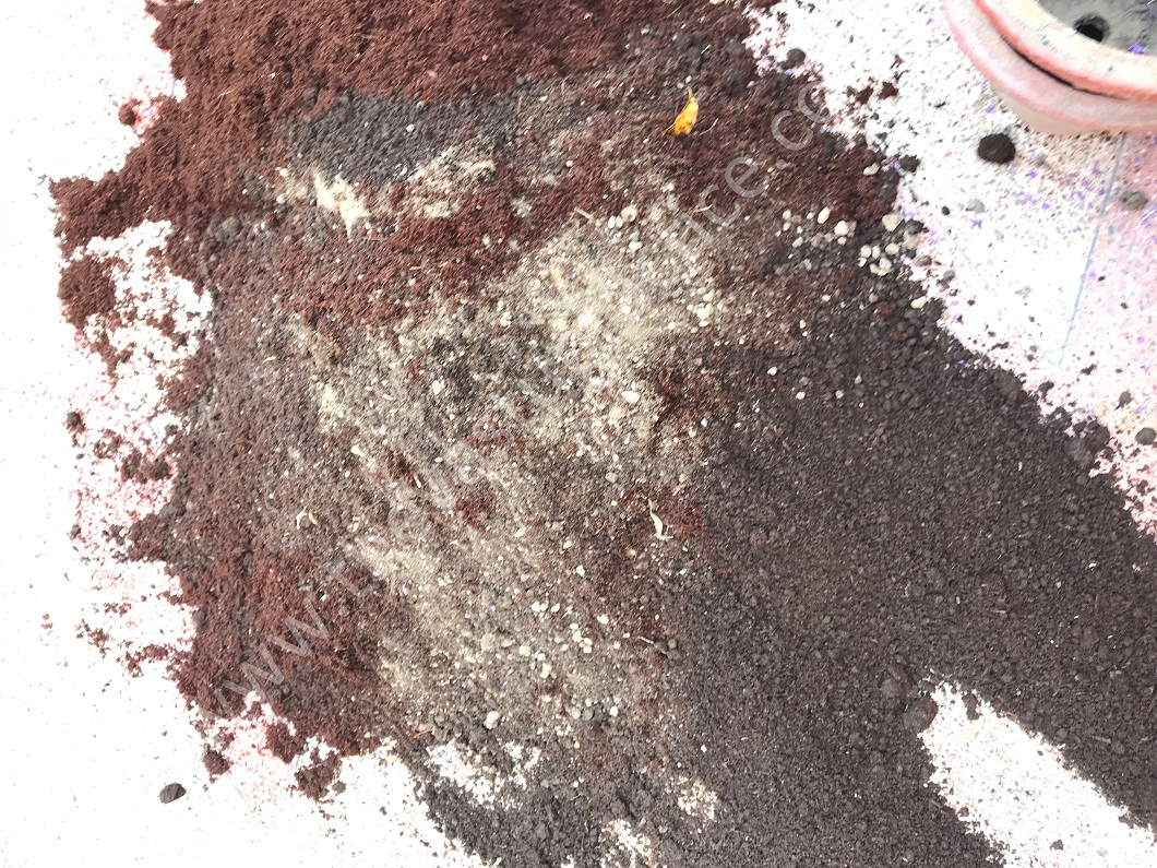 Compost and cocopeat and mix together